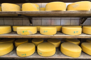 hoop cheese for sale
